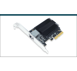 REPOTEC 10GBase-T/NBASE-T PCI Express Adapter