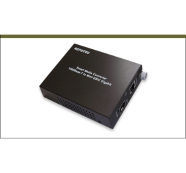 REPOTEC 1000Base-T to mini-GBIC Smart Gigabit Media Converter | RP-1002MG