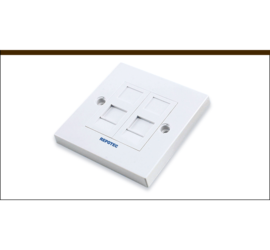 REPOTEC Ethernet Face Plate | RP-FP0627